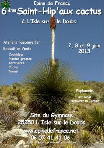 2013 : Cap sur les tropiques avec la Saint-Hip'aux cactus dans L'Isle-sur-le-Doubs en action - CAP sur 2014 affiche-2013-211x300